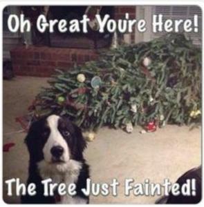 tree fainted