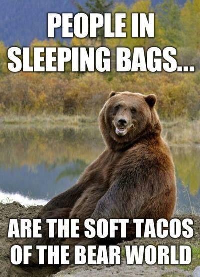 bear soft tacos