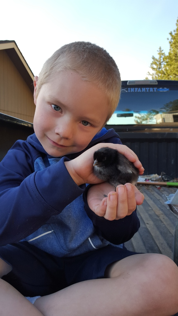 Carter with chick