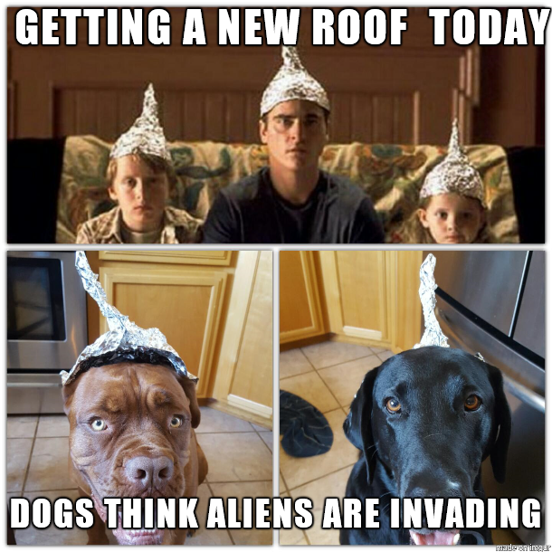 tin foil hats meme