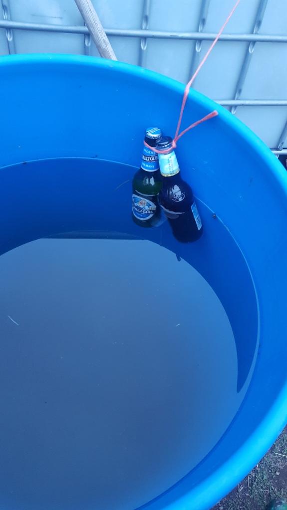 beer in the barrel